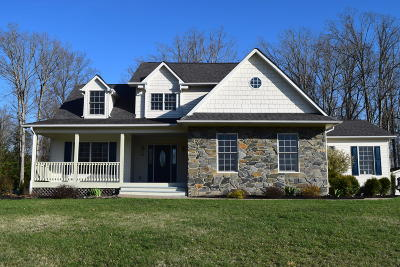 Bedford County Single Family Home For Sale: 169 Sunset Pointe Dr
