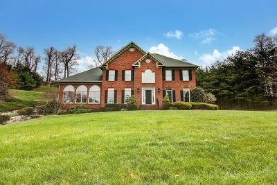 Roanoke County Single Family Home For Sale: 1573 Strawberry Mountain Dr