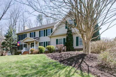 Roanoke County Single Family Home For Sale: 4244 Buck Mountain Rd