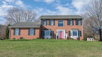 Roanoke Single Family Home For Sale: 318 McIntosh Rd