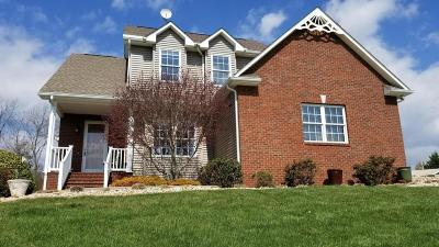 Boones Mill Single Family Home For Sale: 694 Dugwell Rd