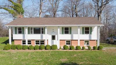 Troutville Single Family Home For Sale: 301 Normans Ln