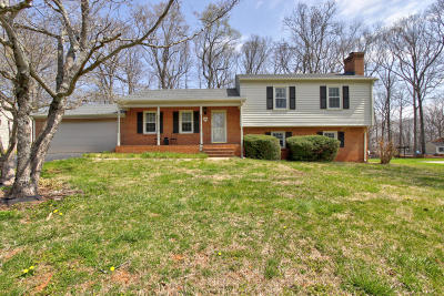 Bedford County Single Family Home For Sale: 106 Forest Dale Dr