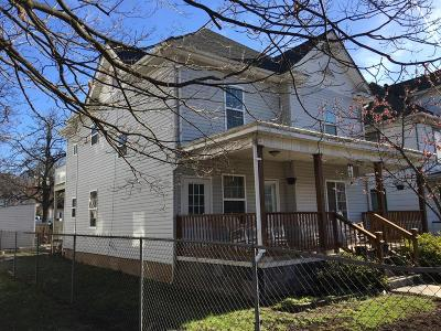 Roanoke Single Family Home For Sale: 1013 Jamison Ave SE