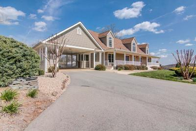 Bedford County Single Family Home For Sale: 6859 Peaks Rd