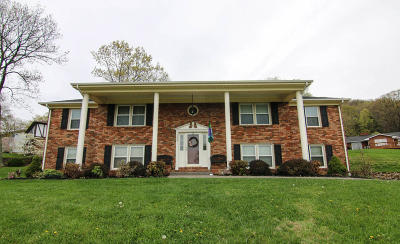 Roanoke County Single Family Home For Sale: 4005 Blandfield Dr