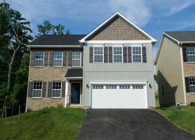 Roanoke County Single Family Home For Sale: 2010 Lawson Ln