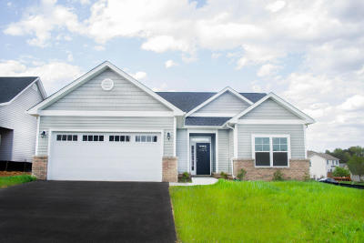 Roanoke VA Single Family Home For Sale: $264,950