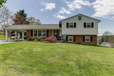 Troutville Single Family Home For Sale: 80 Springview Ct