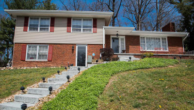 Roanoke Single Family Home For Sale: 2520 Maycrest St NW