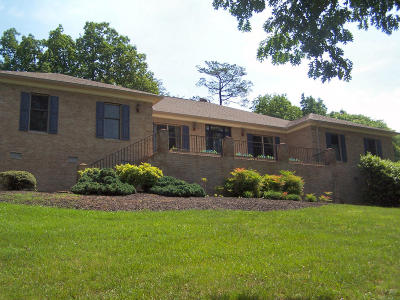 Blue Ridge Single Family Home For Sale: 294 Heritage Dr