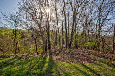 Roanoke County Residential Lots & Land For Sale: Willow Spring Rd