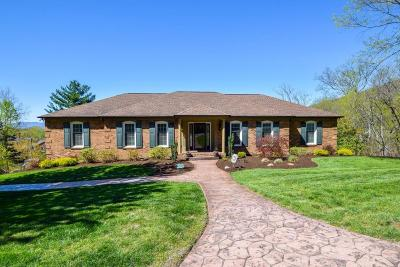 Roanoke County Single Family Home For Sale: 4060 Horsepen Mountain Dr