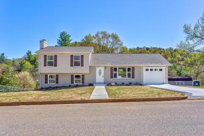 Roanoke County Single Family Home For Sale: 5612 Green Meadow Rd