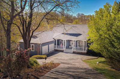 Moneta Single Family Home For Sale: 106 Ferncliff Ct