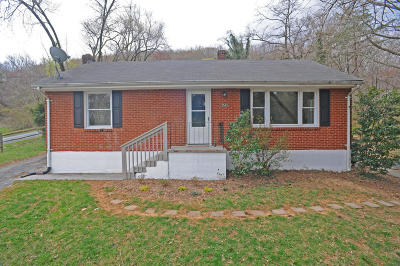 Roanoke Single Family Home For Sale: 3543 Yellow Mountain Rd