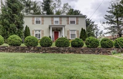 Roanoke Single Family Home For Sale: 3215 Grandin Rd