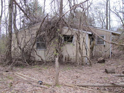Roanoke County Single Family Home For Sale: 8758 Bent Mountain Rd