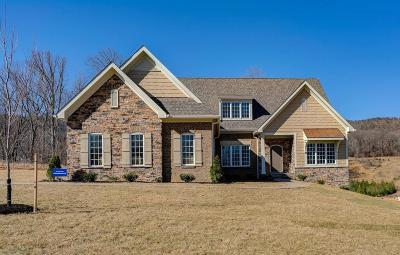 Roanoke County Single Family Home For Sale: 6964 Fairway Ridge Rd
