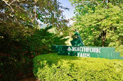 Single Family Home For Sale: 3461 North Fork Farms