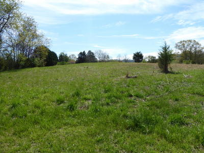 Residential Lots & Land For Sale: 8433 Holly Tree Dr