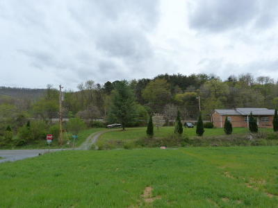 Blue Ridge Residential Lots & Land For Sale: 684 Webster Heights Rd