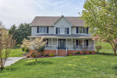 Botetourt County Single Family Home For Sale: 175 Wellington Ln