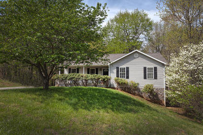 Bedford County Single Family Home For Sale: 1185 Virginia Woods Dr