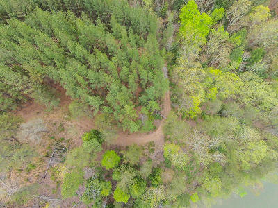 Pittsylvania County Residential Lots & Land For Sale: Lot 115 Eagle Pointe Shores Dr