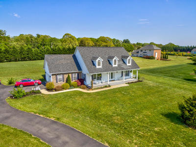 Boones Mill Single Family Home For Sale: 80 Little Creek Way