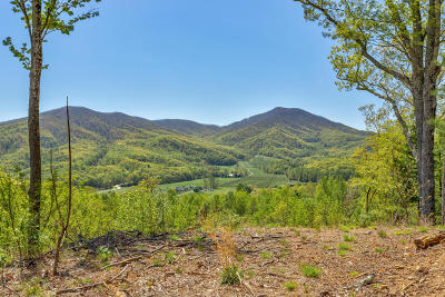 Residential Lots & Land For Sale: Franklin Rd
