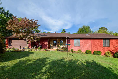 Botetourt County Single Family Home For Sale: 58 Foxcroft Ln