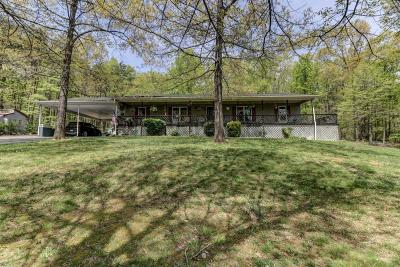 Single Family Home For Sale: 770 Purgatory Mountain Rd
