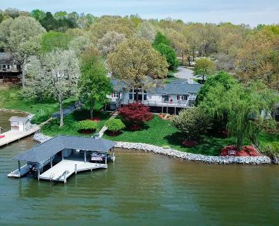 Moneta Single Family Home For Sale: 20 Deep Creek Ct