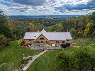 Botetourt County Single Family Home For Sale: 648 Idle Acres Rd