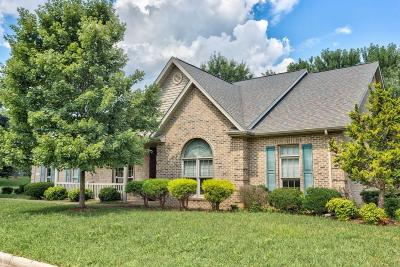 Roanoke Single Family Home For Sale: 1702 Beckys Pl SW