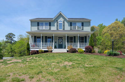 Bedford County Single Family Home For Sale: 1289 Rock Haven Rd