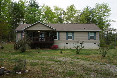 Botetourt County Single Family Home For Sale: 1853 Ball Park Rd