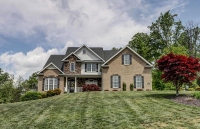 Botetourt County Single Family Home Sold: 203 Butler Ct
