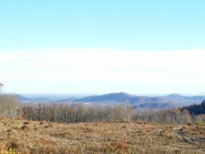Blue Ridge Residential Lots & Land For Sale: High Place Ln