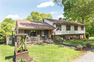 Bedford County Single Family Home For Sale: 109 Springhill Cir