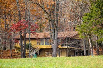 Botetourt County Single Family Home For Sale: 995 Lees Gap Rd