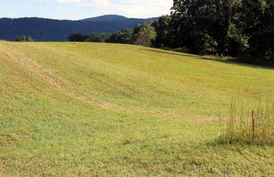 Residential Lots & Land For Sale: Blue Ridge Springs Rd
