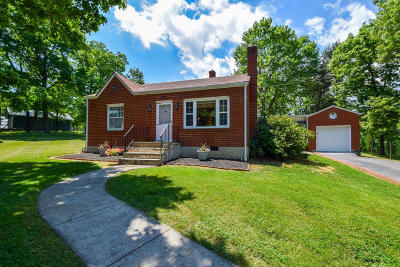 Single Family Home For Sale: 294 Webster Heights Rd