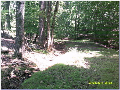 Bedford County Residential Lots & Land For Sale: Lot 4 Creeden Dr