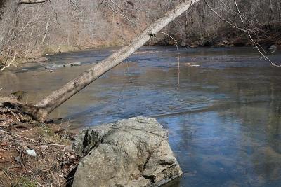 Bedford County Residential Lots & Land For Sale: Gander Ln