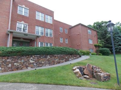 Roanoke County Attached For Sale: 3060 McVitty Forest Dr #317