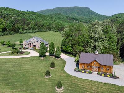 Lexington VA Single Family Home For Sale: $849,000