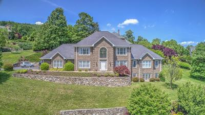 Roanoke County Single Family Home For Sale: 7585 Autumn Park Dr