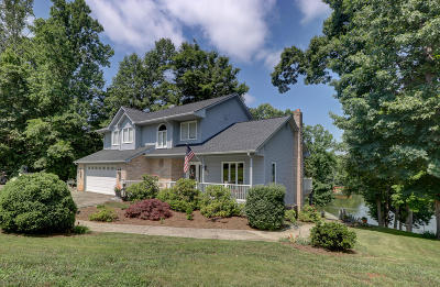 Bedford County, Franklin County, Pittsylvania County Single Family Home For Sale: 125 Maiden Ln